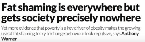 New Scientist Obesity